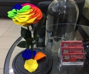 Роза которая стоит 5 лет купить